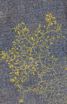 Physarum on denim