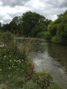 The macroscopically pristine chalk river, The Itchen.
